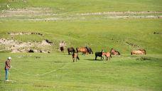橡皮山-共和-小民2011