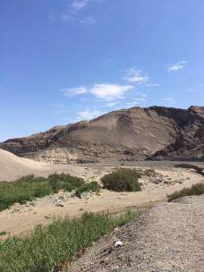 塔克拉玛干沙漠(巴音郭楞)-巴音郭楞-真诚7577