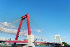 威廉姆斯大桥-鹿特丹-doris圈圈