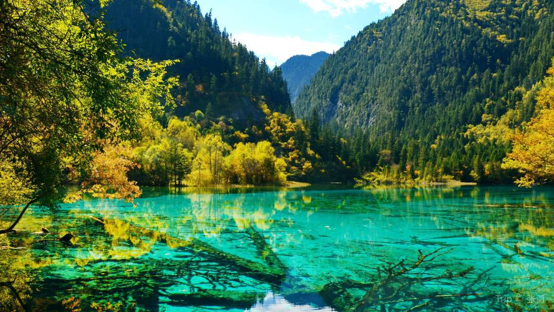 9 Days Sichuan World Heritage Tour -Jiuzhai Valley with Lehsan and Emei