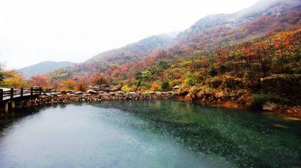 茶人谷 (7)