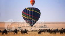 马赛马拉国家公园热气球之旅