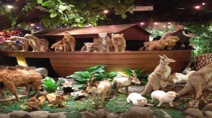 欢乐动物汇7(新2016-9-7)