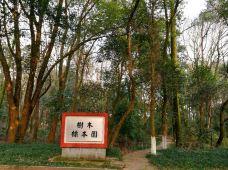 江西农业大学树木标本园-南昌-M30****2791