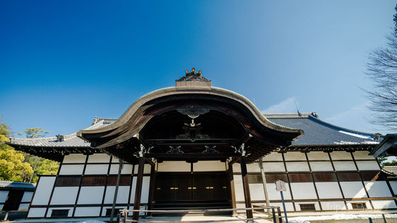 Nijo Castle and Ninomaru Palace Admission Ticket in Kyoto