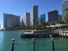 海湾市场-迈阿密-M30****5232