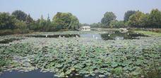 白龟山水库(平西湖)-平顶山-M25****4972