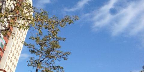 豐順金德寶凱悅國際溫泉