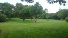 Jan Cilliers Park-比勒陀利亚