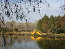 渌洋湖湿地公园-江都区-205****075