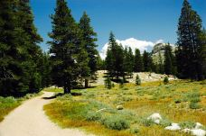 Parsons Memorial-优胜美地国家公园及周边地区