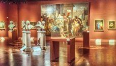 奥尔良美术馆-奥尔良-C年度签约摄影师