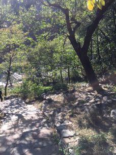 贺兰山国家狩猎场-阿拉善-滇国剑客