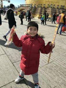华藏寺-峨眉山-不胖的胖妹妹
