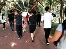 鄢陵国家花木博览园-鄢陵