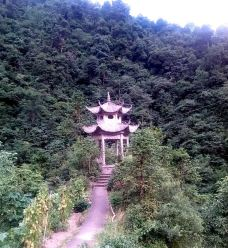 白马山森林公园-遂昌-漢江鴨鴨