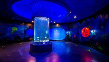 芜湖大白鲸海洋公园 (4)