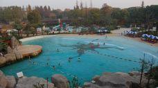 汤池温泉-应城-doris圈圈