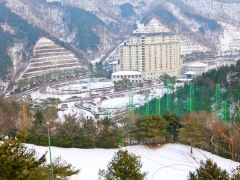 江原道滑雪2日游