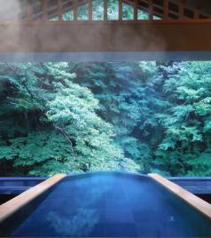 箱根游记图文-日本关东 | 8家泡汤酒店合集