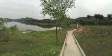 南阳白河-新野-龙之心