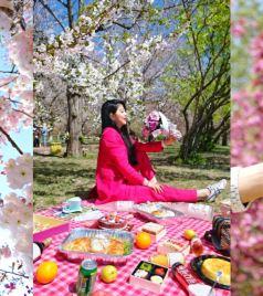 旅顺口区游记图文-再也不会有这样奢侈的一年,肆无忌惮沉迷于家乡的春天。(大连赏樱攻略)