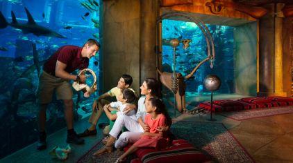 亚特兰蒂斯失落的空间水族馆 the lost chambers aquarium (11)