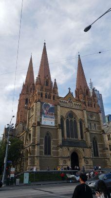 圣保罗大教堂-墨尔本-锛跑的大象
