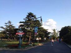 星海公园-大连-怀念大鱼大肉