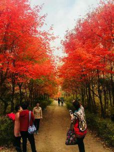 吉林伊通火山群国家级自然保护区-伊通-韩老仙