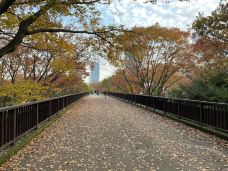 代代木公园-东京