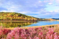 达尔滨湖国家森林公园-呼伦贝尔-C年度签约摄影师