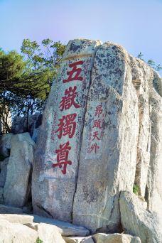 五岳独尊-泰山-尊敬的会员