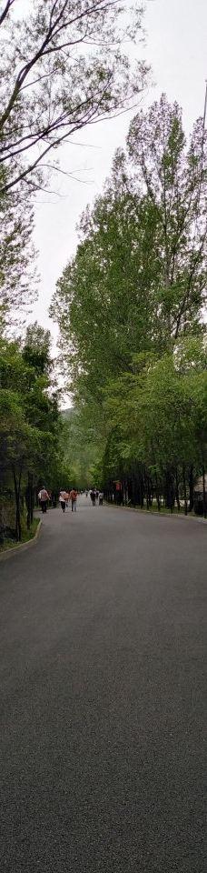 藏山风景区-盂县