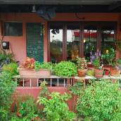 宜蘭芭蕉院子b