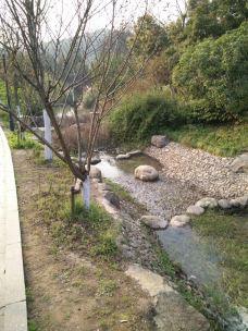 龙山公园-上虞区-_CFT01****9781119