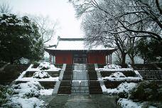 明孝陵-南京-尊敬的会员