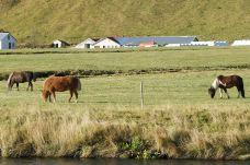 森林瀑布-冰岛南部区-尊敬的会员