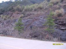 云阳国家森林公园-茶陵-M17****030