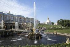 夏宫-圣彼得堡-尊敬的会员