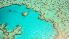 心形礁-大堡礁-尊敬的会员