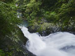 绿色井冈山生态2日游