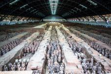File490-秦始皇兵马俑博物馆-西安-蒋宜霖