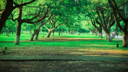 湖南长沙橘子洲公园