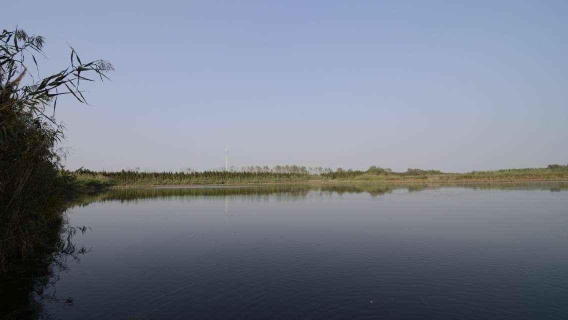 Qinhu National Wetland Park Admission Ticket