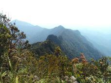五指山国家级自然保护区-五指山-320****933