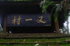 又一村-青城山-Vicers