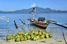 _DSC5905印度尼西亚,巴厘岛-巴拉望-黄启勇