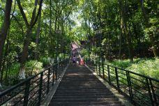 翠屏山公园-宜宾-aidiko