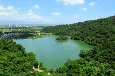 梅花湖-宜兰-当地向导台灣旅遊管家大忠